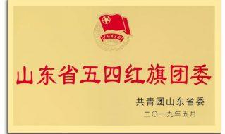 """厉害了我的团!沂星公司团委获评""""山东省五四红旗团委""""!"""